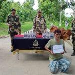 देशी शराब व पशु की तस्करी करने की कोशिश में भारतीय तस्कर को सीमा सुरक्षा बल ने दबोचा